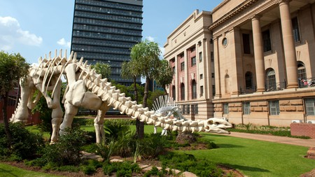 There are tons of things to see in Pretoria, including the National Museum of Natural History
