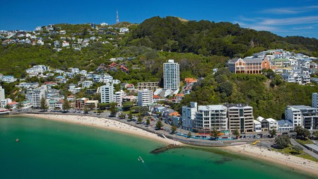 Oriental Bay and Mount Victoria are always a hive of activity