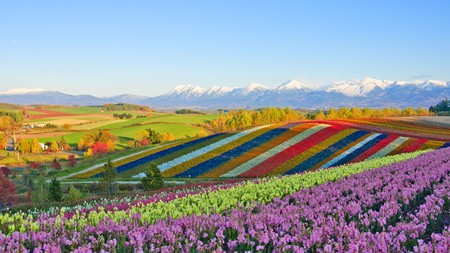 Furano transforms beautifully with the seasons