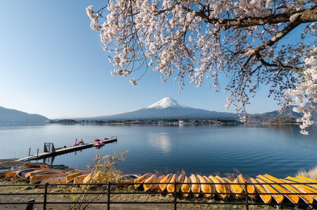 The Best Cafes In Fuji Five Lakes