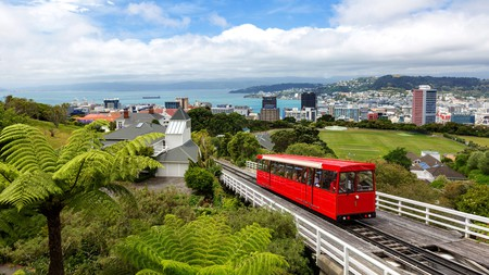 Catch the Wellington Cable Car up to the Botanic Gardens in Kelburn, for spectacular views of the city
