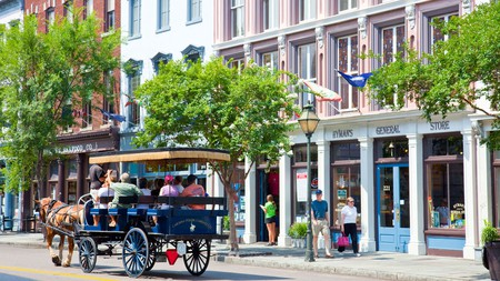Horse Carriage tour in old Charleston, South Carolina