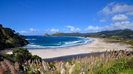 Medlands Beach is a must-see when on Great Barrier Island