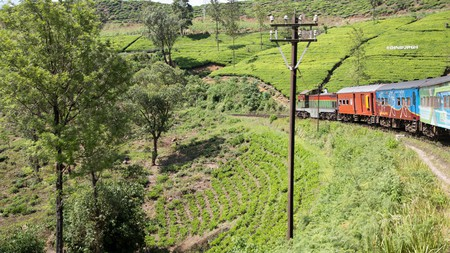 Train journey climbing through countryside in Nuwara Eliya, Sri Lanka, Asia