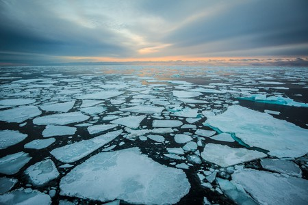 Explore the Arctic from the comfort of your home