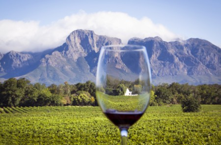South Africa is famed for its wine production around the world