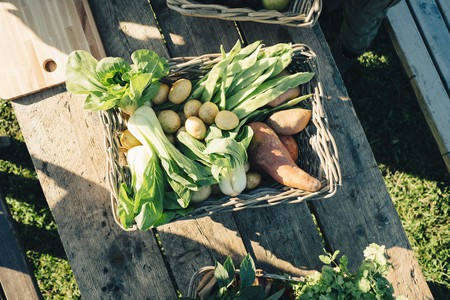 Directly above shot of fresh organic vegetables in basket on table at farmers market