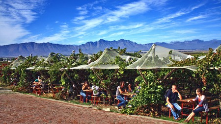 The Riebeek Valley Olive Festival is a favourite of local foodies