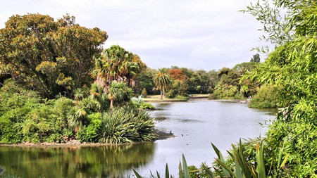 A visit to Melbourne's Royal Botanic Gardens is ideal for a spot of nature in the city
