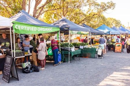 Skip the grocery store, and buy local at Byron Farmers Market
