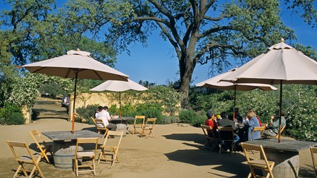 The Santa Barbara Valley has the perfect climate for cultivating pinot noir and chardonnay
