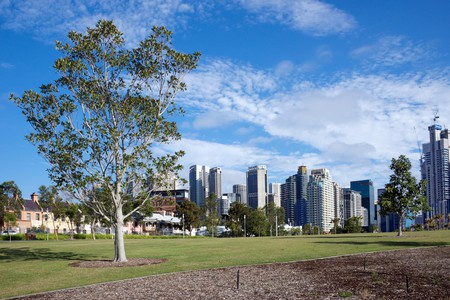 Barangaroo Reserve and city skyline, Sydney.