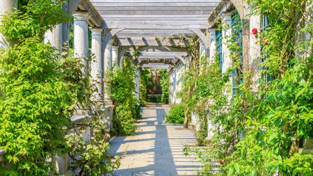 Hampstead Pergola is a picturesque space worth visiting