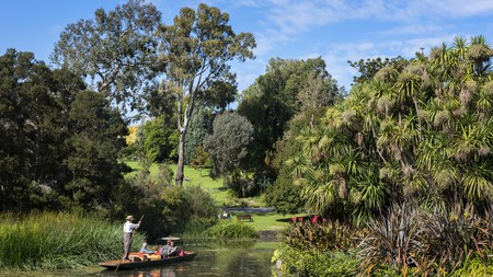 Spend a relax day punting on the Ornamental Lake at the Royal Botanic Gardens