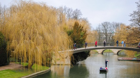 Cambridge is home to many relaxing green spaces