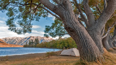 Try your hand at camping in spots such as Canterbury's Craigieburn Forest Park