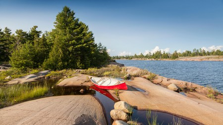 Hike among towering pines and distinctive rock formations in Georgian Bay Biosphere Reserve