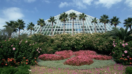Moody Gardens is an hour outside Houston and has activities the entire family will enjoy