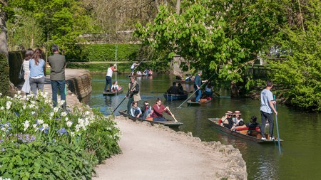 People enjoy Oxford Botanic Garden and punting on the River