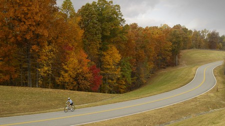 Hike, bike, horseback ride or simply take a relaxing drive through the Natchez Trace parkway just south of Nashville