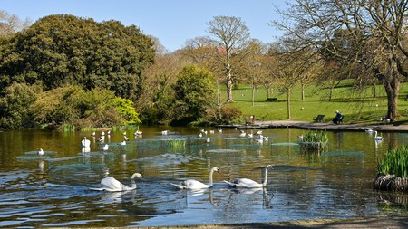 The hip seaside resort of Brighton has an attractive array of green spaces