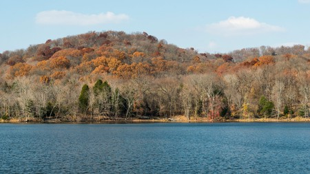 Nashville's Radnor Lake is a great place to admire golden leaves in the fall