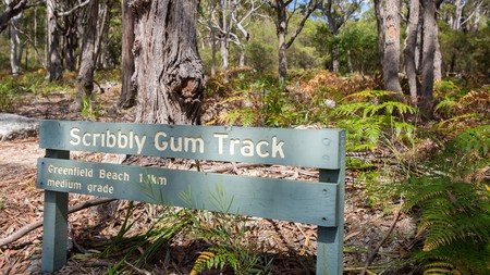The Scribbly Gum Track lies within the Jervis Bay National Park