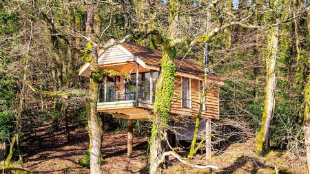 There is no shortage of unique Airbnb options in Devon, including this quirky treehouse