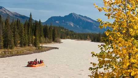 Go rafting on the Athabasca River in Jasper National Park