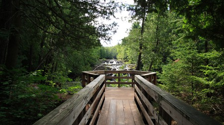 Wisconsin State Park is one of Wisconsin's many parks where you can be at one with nature