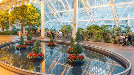 The indoor Devonian Gardens, in Calgary, are a great spot to relax – and you can come here all year round
