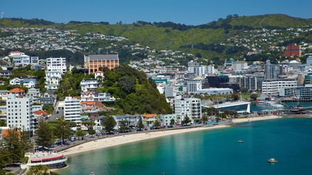 Oriental Bay is one of Wellington's most beautiful beaches, so why not head there for a picnic?