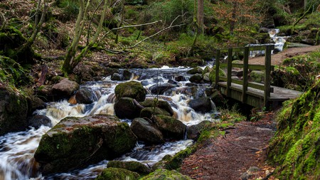 Wyming Brook Nature Reserve, in Yorkshire, is one of the UK's many natural beauty spots