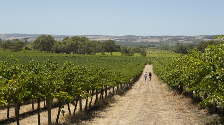 For your next Australian adventure, book a stay among the country's finest vineyards