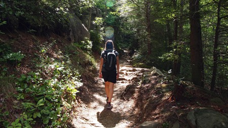 Hiking in the Great Smoky Mountains National Park is hugely popular