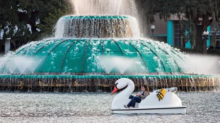 Tourists paddle swan boats around Lake Eola Park
