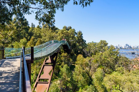 The Kings Park Lotterywest Federation Walkway Bridge offers a treetop walk and spectacular views towards Perth