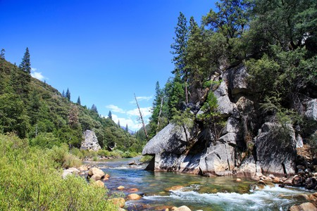 Camp right along the Kings River in Fresno, California