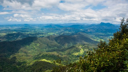 Overlook at the Springbrook National Park, New South Wales, Australia