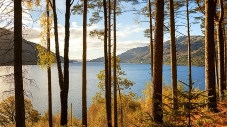Top spots to witness autumn foilage in the UK include the banks of Loch Lomond in Scotland