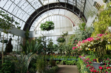 Inside a glasshouse at the Auckland Botanical Gardens, New Zealand