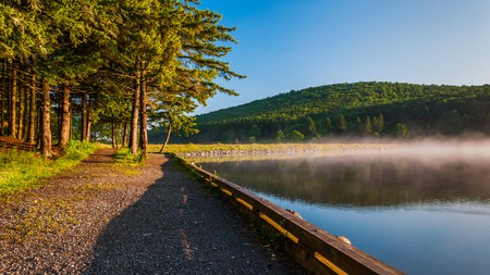 The Monongahela National Forest is a stunning place to visit in West Virginia