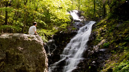 Head to Virginia for a wellness break of wine, hiking and yoga