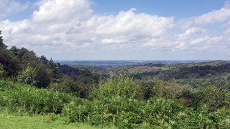 Surrey Hills is home to many revitalising walks