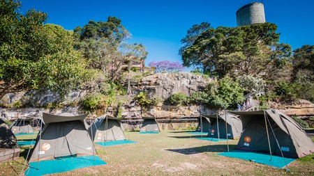 Top camping destinations in New South Wales include Cockatoo Island