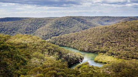 Ku-ring-gai Chase National Park is steeped in Aboriginal history and culture and a haven for flora and fauna
