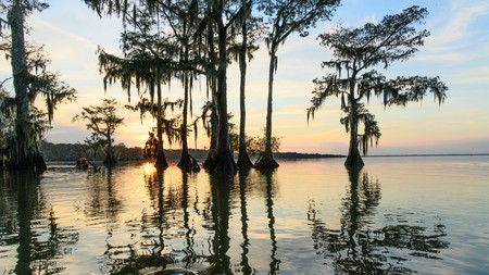 Louisiana offers a range of beautiful parks