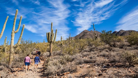 A hike in the McDowell Sonoran Preserve is one of the top things to do in Scottsdale, Arizona