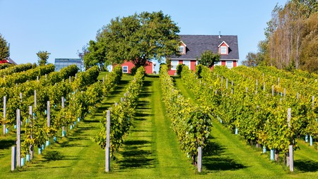 The Myriad View Artisan Distillery is among the top distilleries and wineries on Prince Edward Island