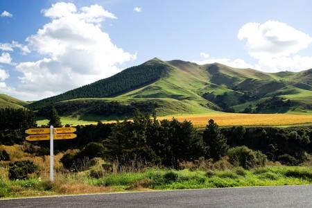 Springrock Vineyard Te Kairanga near Martinborough Wairarapa North Island New Zealand